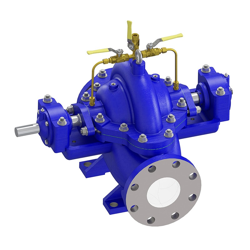 Double Suction Heavy Duty Pump